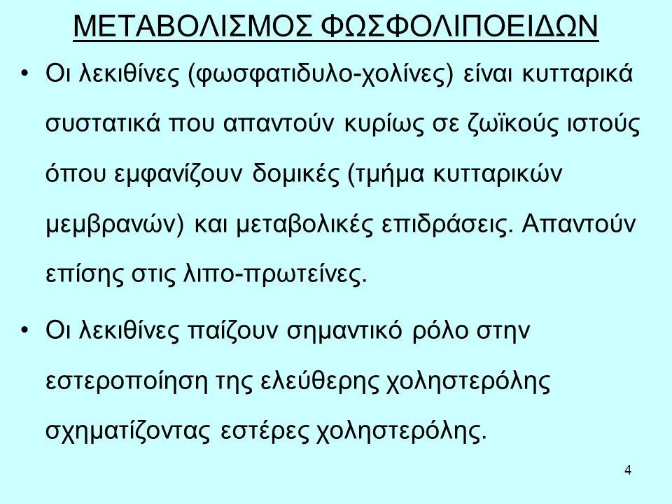 5 ΛΕΚΙΘΙΝΗ