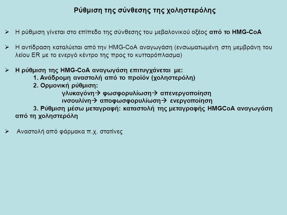 Ρύθμιση της σύνθεσης της χοληστερόλης  Η ρύθμιση γίνεται στο επίπεδο της σύνθεσης του μεβαλονικού οξέος από το HMG-CoA  H αντίδραση καταλύεται από την HMG-CoA αναγωγάση (ενσωματωμένη στη μεμβράνη του λείου ΕR με το ενεργό κέντρο της προς το κυτταρόπλασμα)  Η ρύθμιση της HMG-CoA αναγωγάση επιτυγχάνεται με: 1.