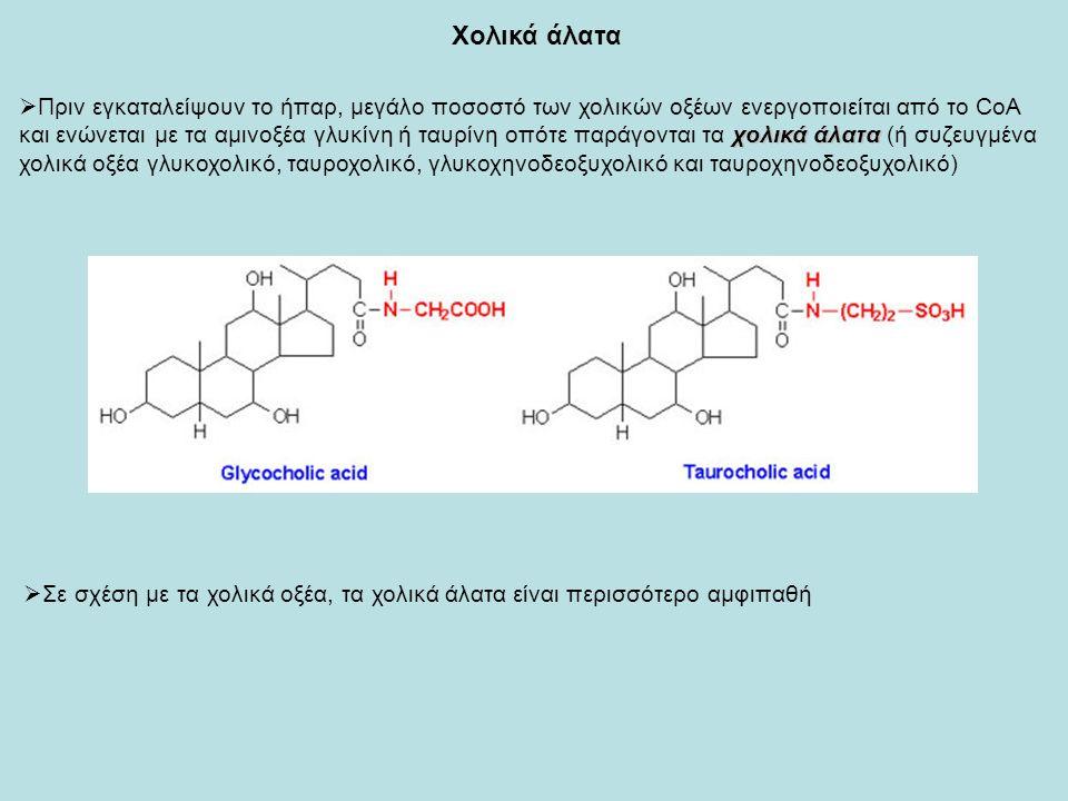 χολικά άλατα  Πριν εγκαταλείψουν το ήπαρ, μεγάλο ποσοστό των χολικών οξέων ενεργοποιείται από το CoA και ενώνεται με τα αμινοξέα γλυκίνη ή ταυρίνη οπότε παράγονται τα χολικά άλατα (ή συζευγμένα χολικά οξέα γλυκοχολικό, ταυροχολικό, γλυκοχηνοδεοξυχολικό και ταυροχηνοδεοξυχολικό) Χολικά άλατα  Σε σχέση με τα χολικά οξέα, τα χολικά άλατα είναι περισσότερο αμφιπαθή