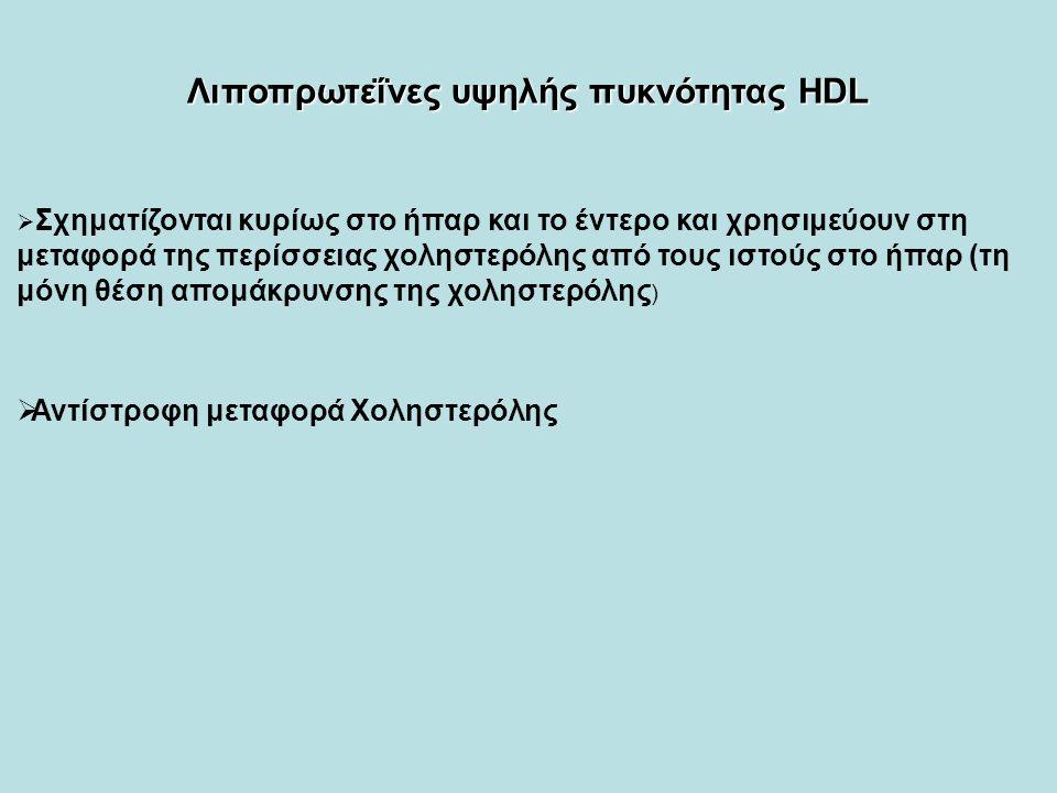  Σχηματίζονται κυρίως στο ήπαρ και το έντερο και χρησιμεύουν στη μεταφορά της περίσσειας χοληστερόλης από τους ιστούς στο ήπαρ (τη μόνη θέση απομάκρυνσης της χοληστερόλης )  Αντίστροφη μεταφορά Χοληστερόλης Λιποπρωτεΐνες υψηλής πυκνότητας ΗDL