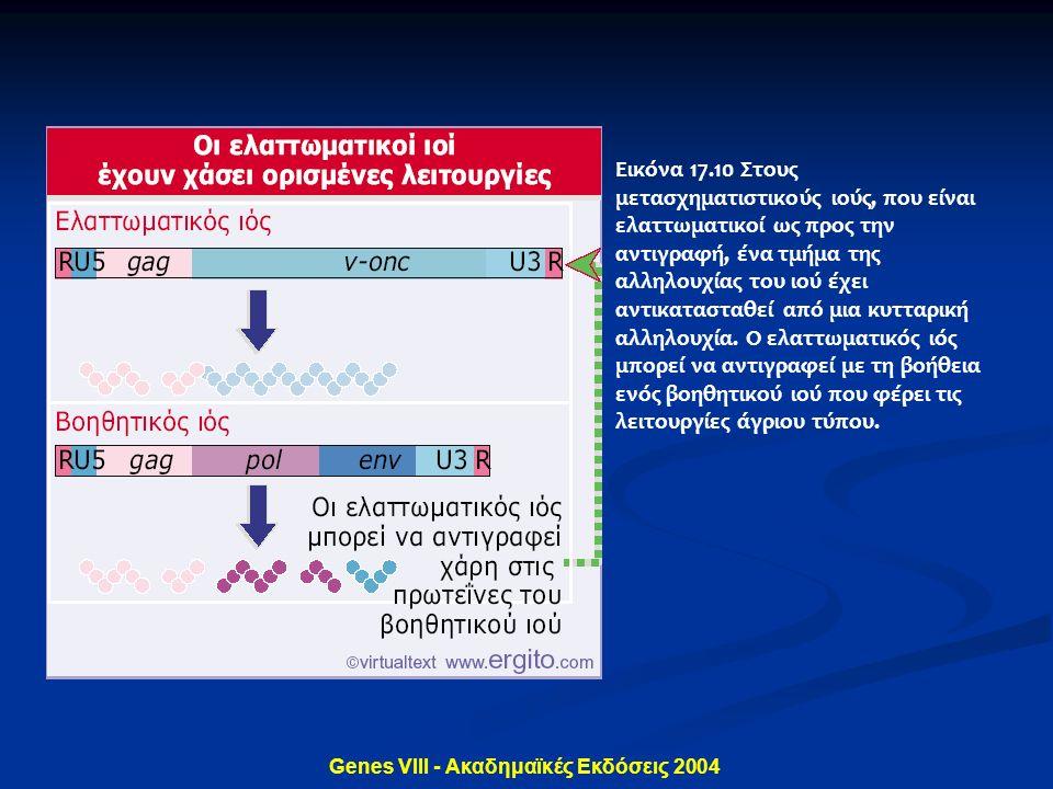 Genes VIII - Ακαδημαϊκές Εκδόσεις 2004 Εικόνα 17.10 Στους μετασχηματιστικούς ιούς, που είναι ελαττωματικοί ως προς την αντιγραφή, ένα τμήμα της αλληλο