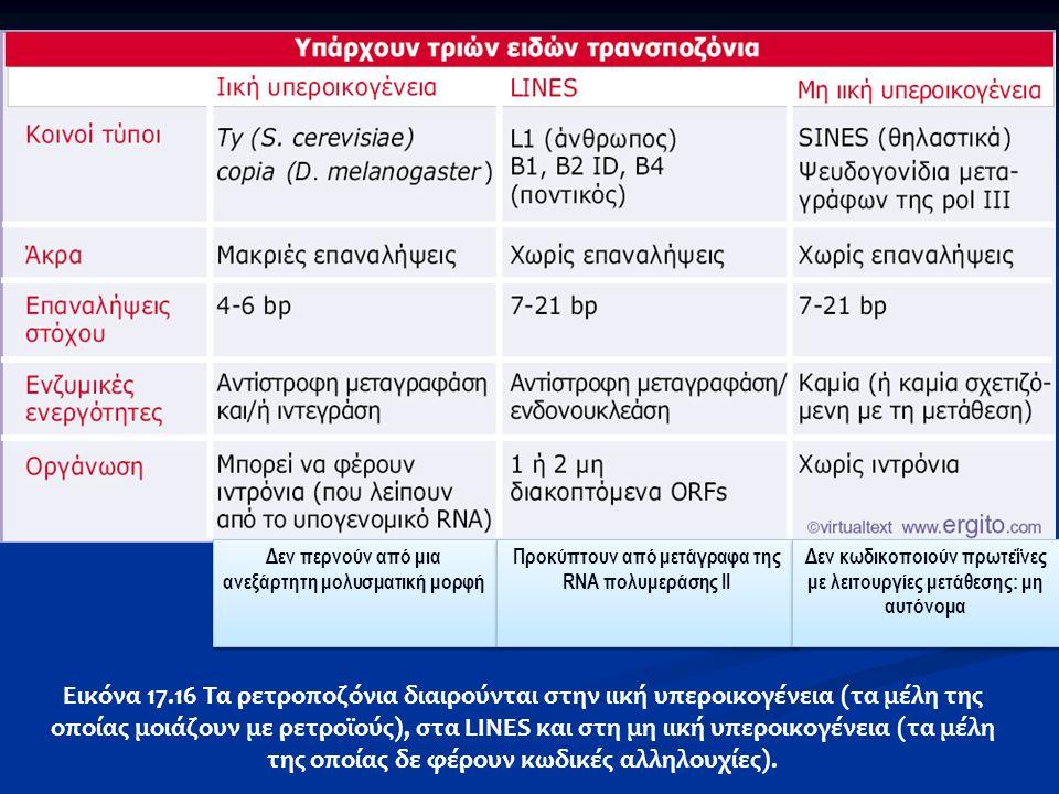 Εικόνα 17.16 Τα ρετροποζόνια διαιρούνται στην ιική υπεροικογένεια (τα μέλη της οποίας μοιάζουν με ρετροϊούς), στα LINΕS και στη μη ιική υπεροικογένεια