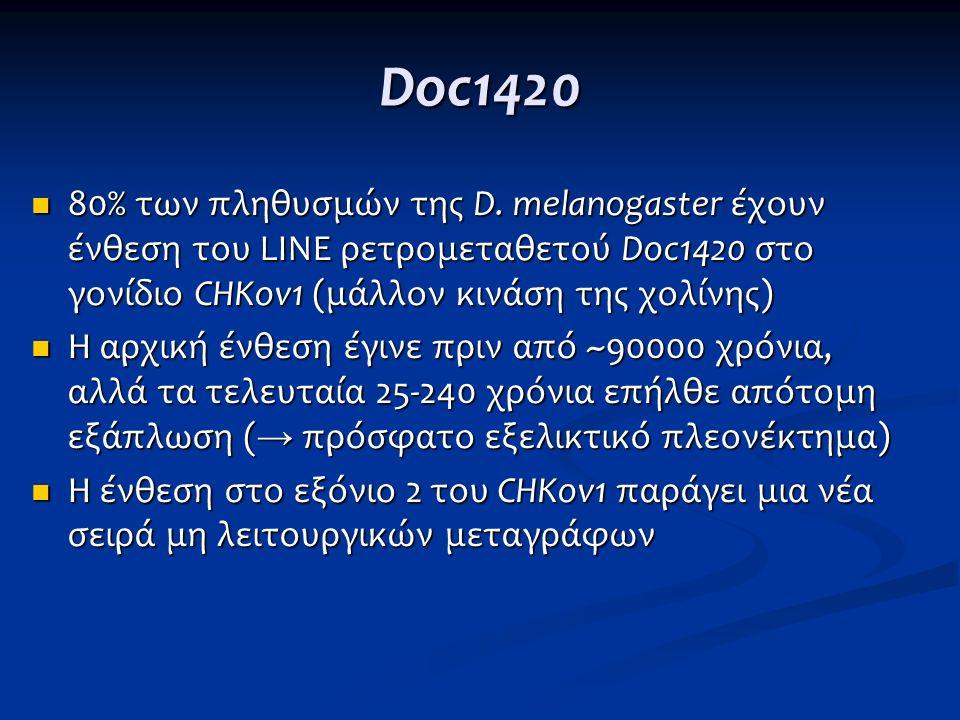 Doc1420 80% των πληθυσμών της D. melanogaster έχουν ένθεση του LINE ρετρομεταθετού Doc1420 στο γονίδιο CHKov1 (μάλλον κινάση της χολίνης) 80% των πληθ