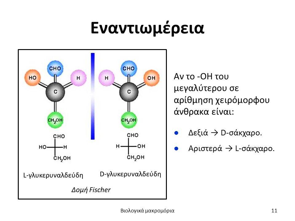 Εναντιωμέρεια Αν το -ΟΗ του μεγαλύτερου σε αρίθμηση χειρόμορφου άνθρακα είναι: ●Δεξιά → D-σάκχαρο. ●Αριστερά → L-σάκχαρο. Βιολογικά μακρομόρια11