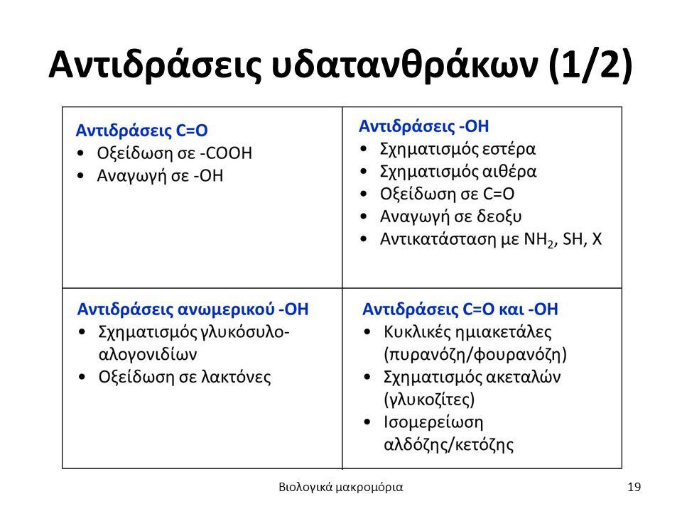 Αντιδράσεις υδατανθράκων (1/2) Βιολογικά μακρομόρια19