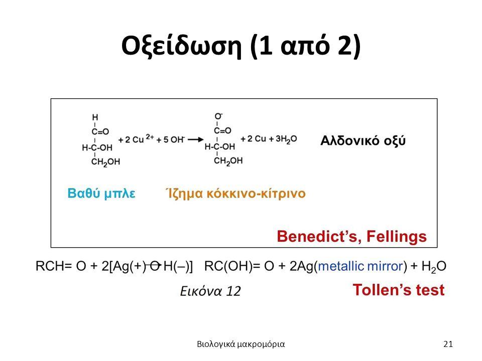 Οξείδωση (1 από 2) Βιολογικά μακρομόρια21