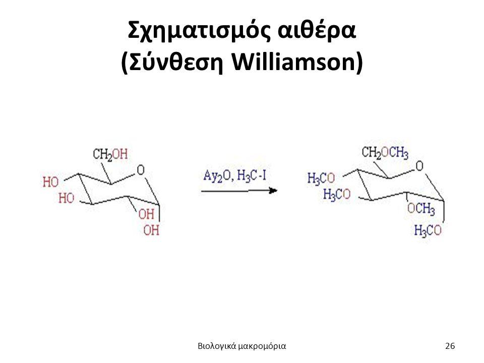 Σχηματισμός αιθέρα (Σύνθεση Williamson) Βιολογικά μακρομόρια26