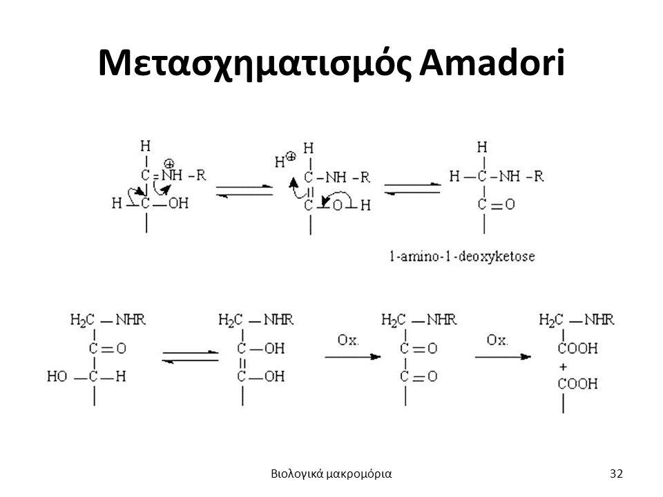 Μετασχηματισμός Amadori Βιολογικά μακρομόρια32