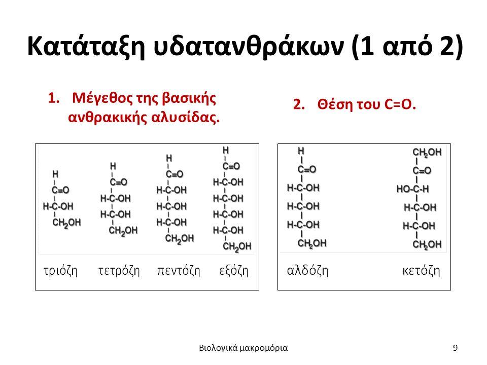 Κατάταξη υδατανθράκων (1 από 2) 1.Μέγεθος της βασικής ανθρακικής αλυσίδας. 2.Θέση του C=O. Βιολογικά μακρομόρια9