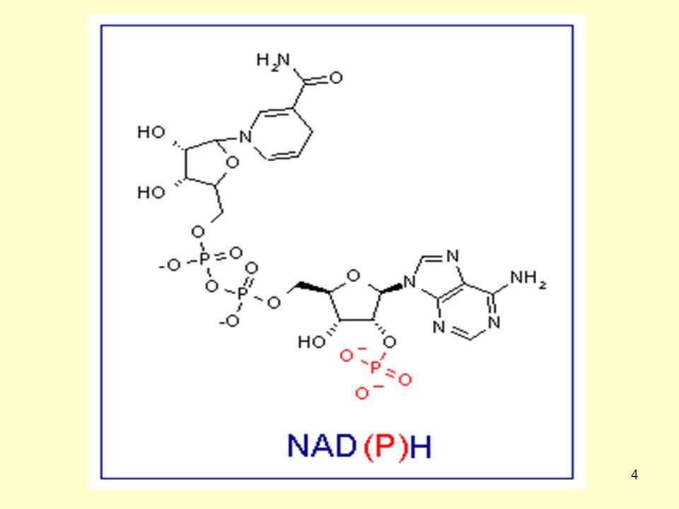 55 Αλληλεπιδράσεις με φάρμακα Η συγχορήγηση του νικοτινικού οξέος με λοβαστατίνη (ένα άλλο φάρμακο μείωσης της χοληστερόλης), ενδέχεται να οδηγήσει σε ραβδομυόλυση (33).