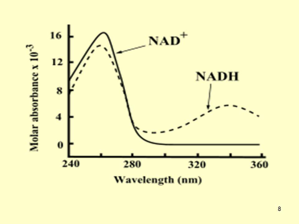 9 Μη-αναγωγικές αντιδράσεις Το NAD, είναι υπόστρωμα για δύο κατηγορίες ενζύμων (μονο-ADP-ριβοσυλ-τρανσφεράση και πολυμεράση της πολυ-ADP-ριβόζης) που χωρίζουν τα νιασίνη από το NAD και μεταφέρουν ADP-ριβόζη σε πρωτεΐνες.
