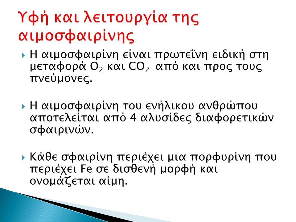  Η αιμοσφαιρίνη είναι πρωτεΐνη ειδική στη μεταφορά O 2 και CO 2 από και προς τους πνεύμονες.  Η αιμοσφαιρίνη του ενήλικου ανθρώπου αποτελείται από 4