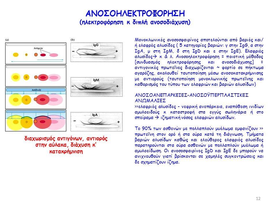 ΑΝΟΣΟΗΛΕΚΤΡΟΦΟΡΗΣΗ (ηλεκτροφόρηση κ διπλή ανοσοδιάχυση) διαχωρισμός αντιγόνων, αντιορός στην αύλακα, διάχυση κ' κατακρήμνιση Μονοκλωνικές ανοσοσφαιρίνες αποτελούνται από βαριές και/ ή ελαφρές αλυσίδες ( 5 κατηγορίες βαριών: γ στην IgG, α στην IgA, μ στη IgM, δ στη IgD και ε στην IgΕ).
