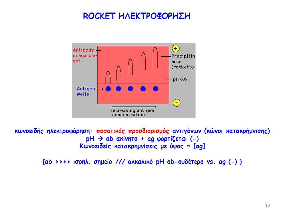 κωνοειδής ηλεκτροφόρηση: ποσοτικός προσδιορισμός αντιγόνων (κώνοι κατακρήμνισης) pH  ab ακίνητο + ag φορτίζεται (-) Κωνοειδείς κατακρημνίσεις με ύψος ~ [ag] {ab >>>> ισοηλ.