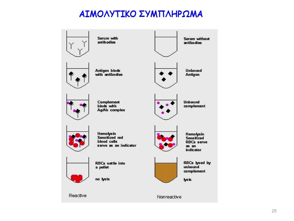 ΑΙΜΟΛΥΤΙΚΟ ΣΥΜΠΛΗΡΩΜΑ 29