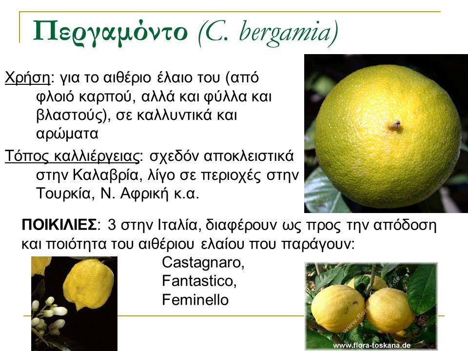Χρήση: για το αιθέριο έλαιο του (από φλοιό καρπού, αλλά και φύλλα και βλαστούς), σε καλλυντικά και αρώματα Τόπος καλλιέργειας: σχεδόν αποκλειστικά στη