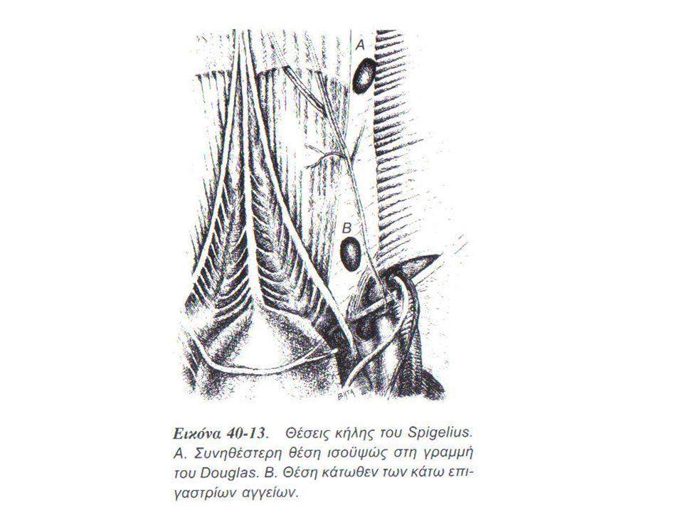 Εικ. 40-13