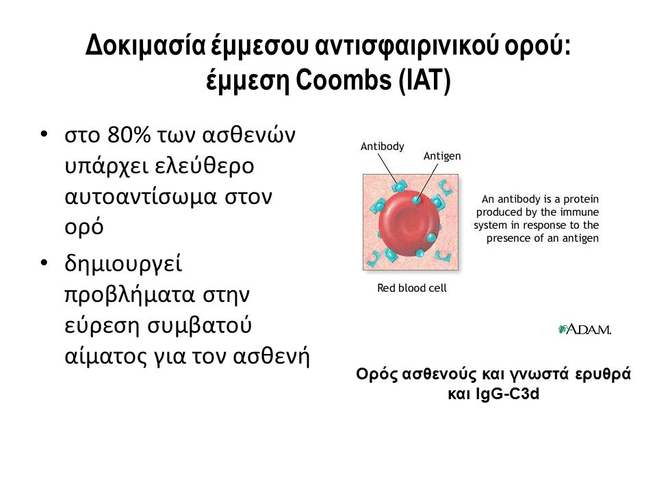 Δοκιμασία έμμεσου αντισφαιρινικού ορού: έμμεση Coombs (IAT) στο 80% των ασθενών υπάρχει ελεύθερο αυτοαντίσωμα στον ορό δημιουργεί προβλήματα στην εύρε