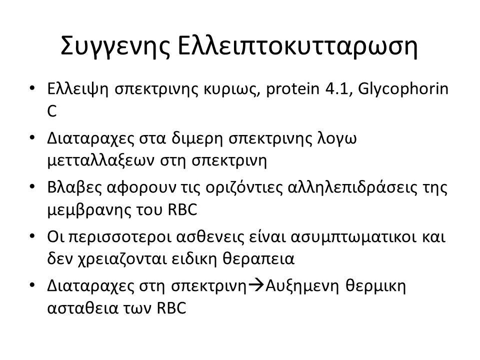 Συγγενης Ελλειπτοκυτταρωση Ελλειψη σπεκτρινης κυριως, protein 4.1, Glycophorin C Διαταραχες στα διμερη σπεκτρινης λογω μετταλλαξεων στη σπεκτρινη Βλαβ