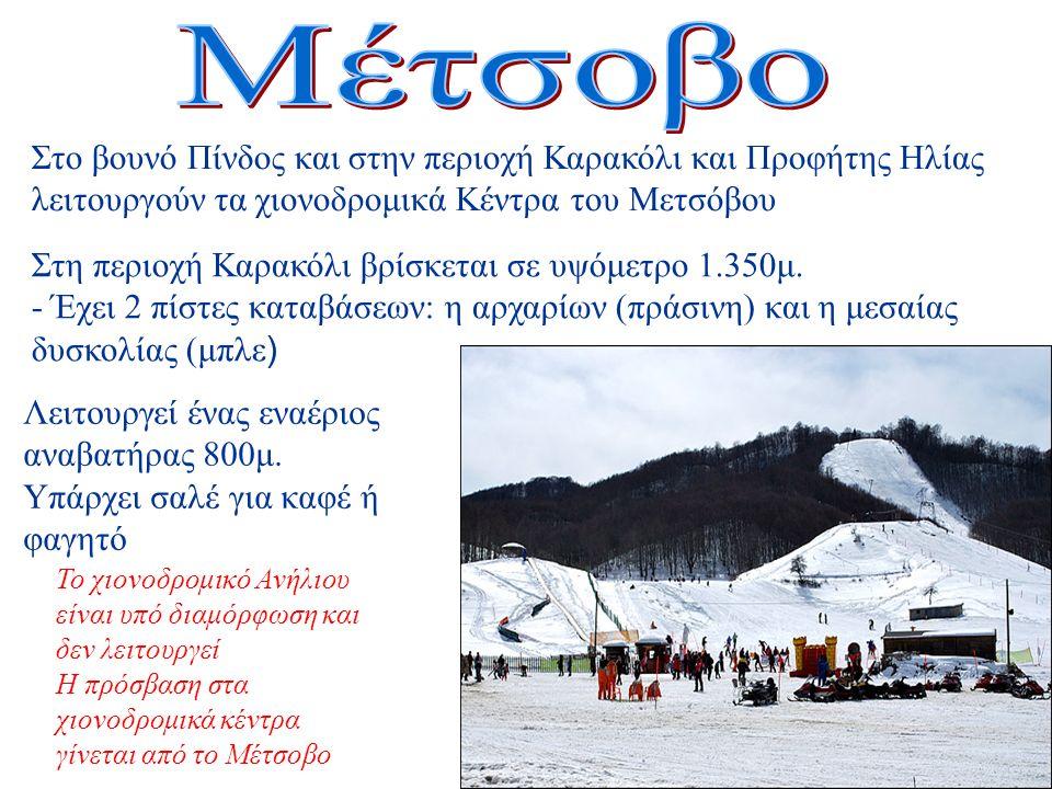 Στο βουνό Πίνδος και στην περιοχή Καρακόλι και Προφήτης Ηλίας λειτουργούν τα χιονοδρομικά Κέντρα του Μετσόβου Στη περιοχή Καρακόλι βρίσκεται σε υψόμετρο 1.350μ.