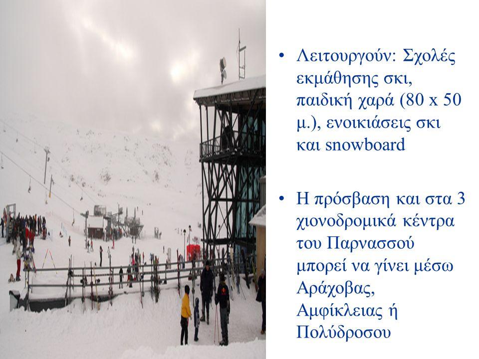 Λειτουργούν: Σχολές εκμάθησης σκι, παιδική χαρά (80 x 50 μ.), ενοικιάσεις σκι και snowboard Η πρόσβαση και στα 3 χιονοδρομικά κέντρα του Παρνασσού μπορεί να γίνει μέσω Αράχοβας, Αμφίκλειας ή Πολύδροσου