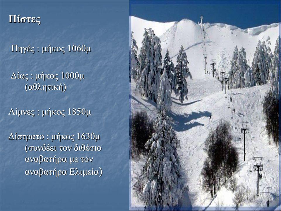 Πίστες Πηγές : μήκος 1060μ Πηγές : μήκος 1060μ Δίας : μήκος 1000μ (αθλητική) Δίας : μήκος 1000μ (αθλητική) Λίμνες : μήκος 1850μ Δίστρατο : μήκος 1630μ (συνδέει τον διθέσιο αναβατήρα με τον αναβατήρα Ελιμεία )