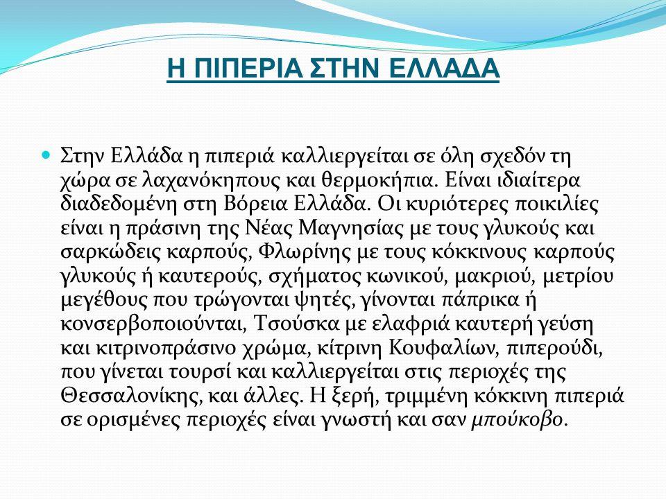 Η ΠΙΠΕΡΙΑ ΣΤΗΝ ΕΛΛΑΔΑ Στην Ελλάδα η πιπεριά καλλιεργείται σε όλη σχεδόν τη χώρα σε λαχανόκηπους και θερμοκήπια.