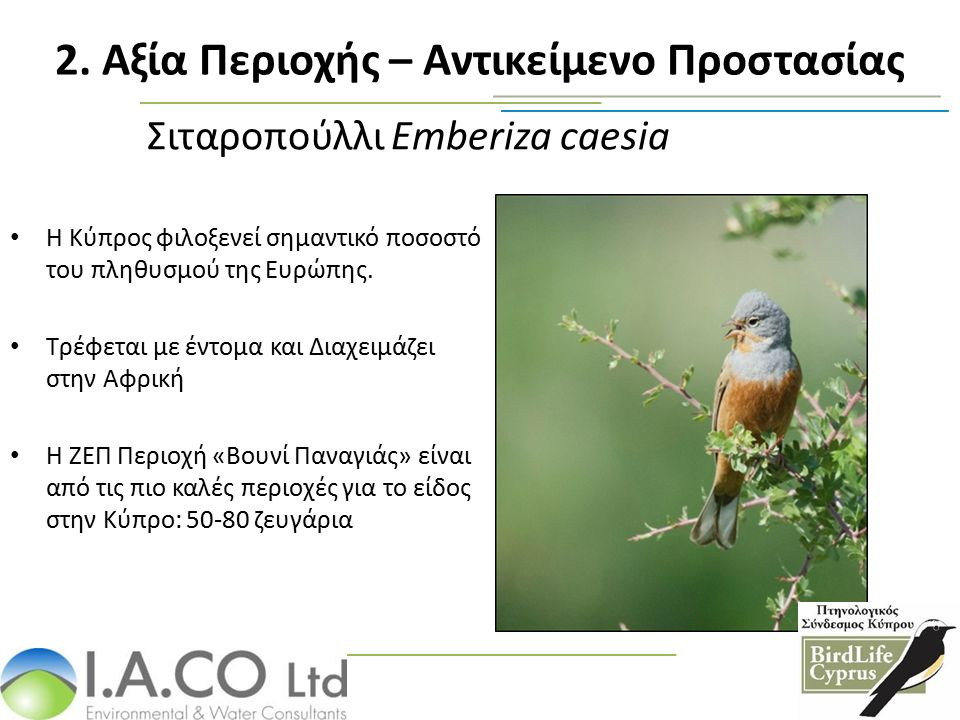 Σιταροπούλλι Emberiza caesia Η Κύπρος φιλοξενεί σημαντικό ποσοστό του πληθυσμού της Ευρώπης. Τρέφεται με έντομα και Διαχειμάζει στην Αφρική Η ΖΕΠ Περι