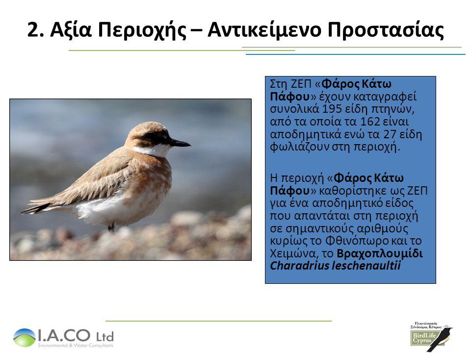 Στη ΖΕΠ «Φάρος Κάτω Πάφου» έχουν καταγραφεί συνολικά 195 είδη πτηνών, από τα οποία τα 162 είναι αποδημητικά ενώ τα 27 είδη φωλιάζουν στη περιοχή.