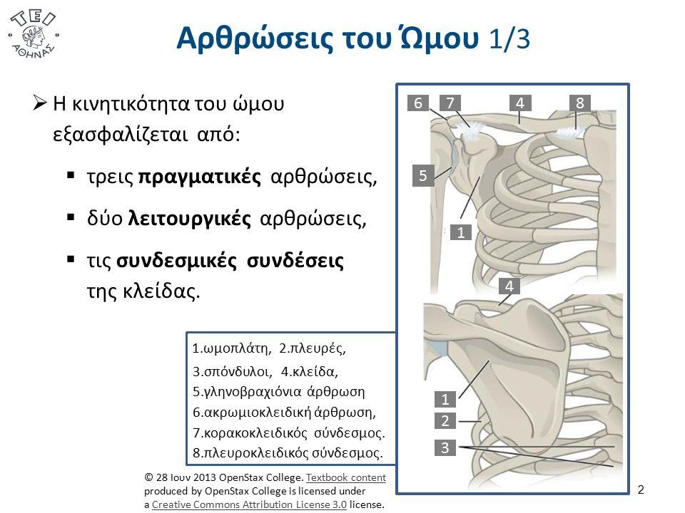 Αρθρώσεις του Ώμου 1/3 2  Η κινητικότητα του ώμου εξασφαλίζεται από:  τρεις πραγματικές αρθρώσεις,  δύο λειτουργικές αρθρώσεις,  τις συνδεσμικές συνδέσεις της κλείδας.