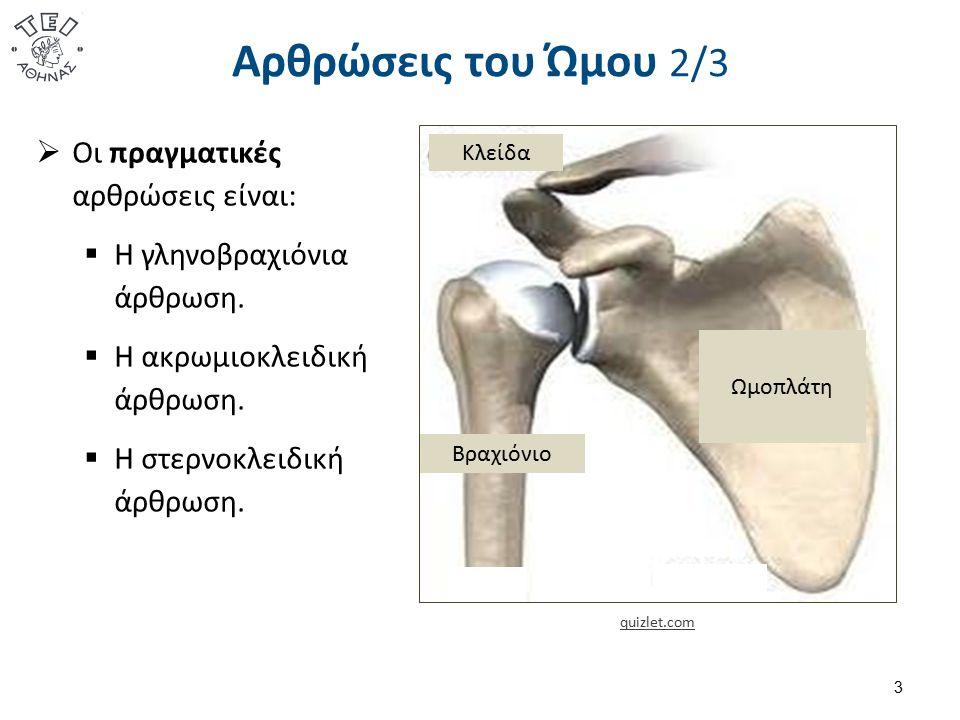 Αρθρώσεις του Ώμου 3/3 4  Οι λειτουργικές αρθρώσεις είναι:  Η ωμοπλατοθωρακική άρθρωση.