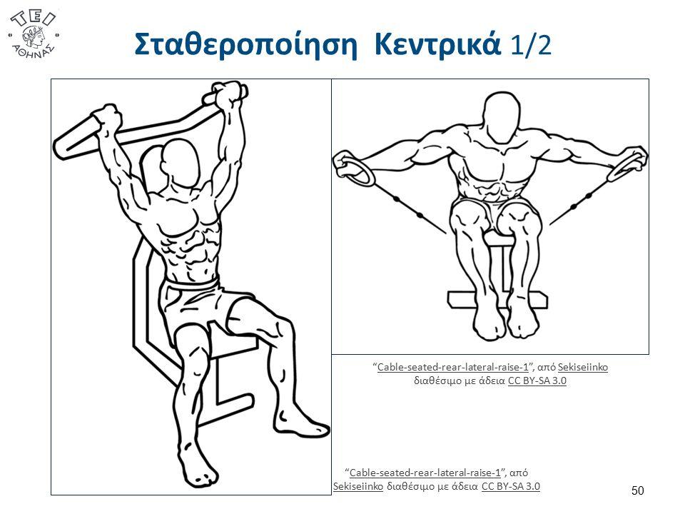 """Σταθεροποίηση Κεντρικά 1/2 50 """"Cable-seated-rear-lateral-raise-1"""", από Sekiseiinko διαθέσιμο με άδεια CC BY-SA 3.0Cable-seated-rear-lateral-raise-1Sek"""