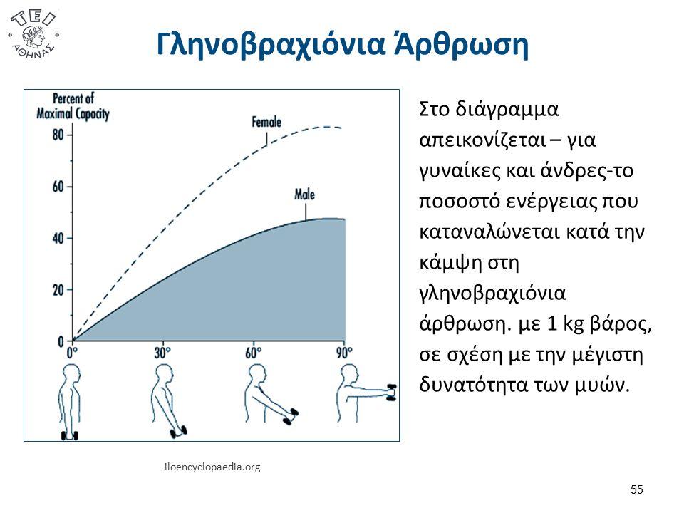 Γληνοβραχιόνια Άρθρωση 55 iloencyclopaedia.org Στο διάγραμμα απεικονίζεται – για γυναίκες και άνδρες-το ποσοστό ενέργειας που καταναλώνεται κατά την κάμψη στη γληνοβραχιόνια άρθρωση.