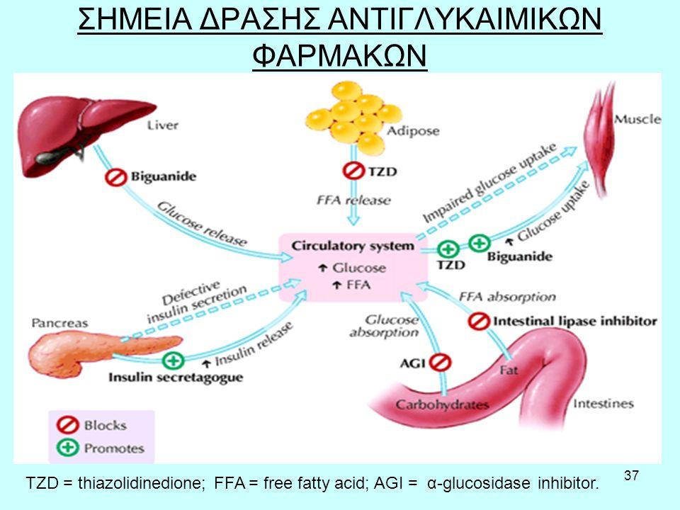 37 ΣΗΜΕΙΑ ΔΡΑΣΗΣ ΑΝΤΙΓΛΥΚΑΙΜΙΚΩΝ ΦΑΡΜΑΚΩΝ TZD = thiazolidinedione; FFA = free fatty acid; AGI = α-glucosidase inhibitor.