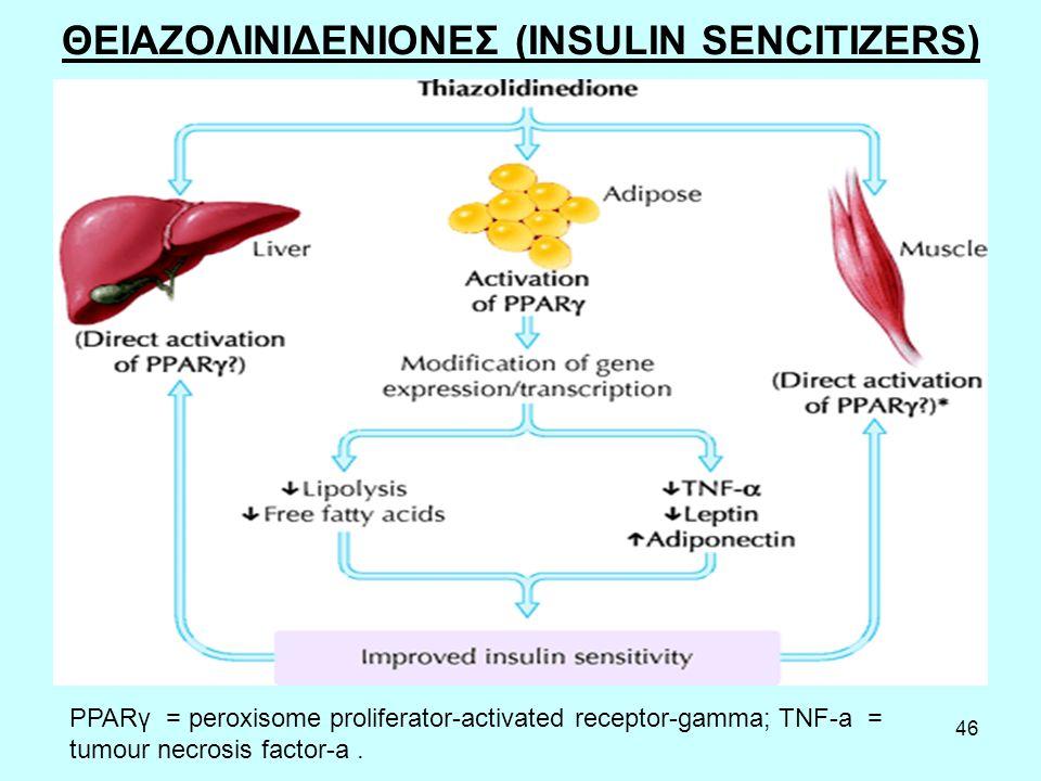 46 ΘΕΙΑΖΟΛΙΝΙΔΕΝΙΟΝΕΣ (INSULIN SENCITIZERS) PPARγ = peroxisome proliferator-activated receptor-gamma; TNF-a = tumour necrosis factor-a.