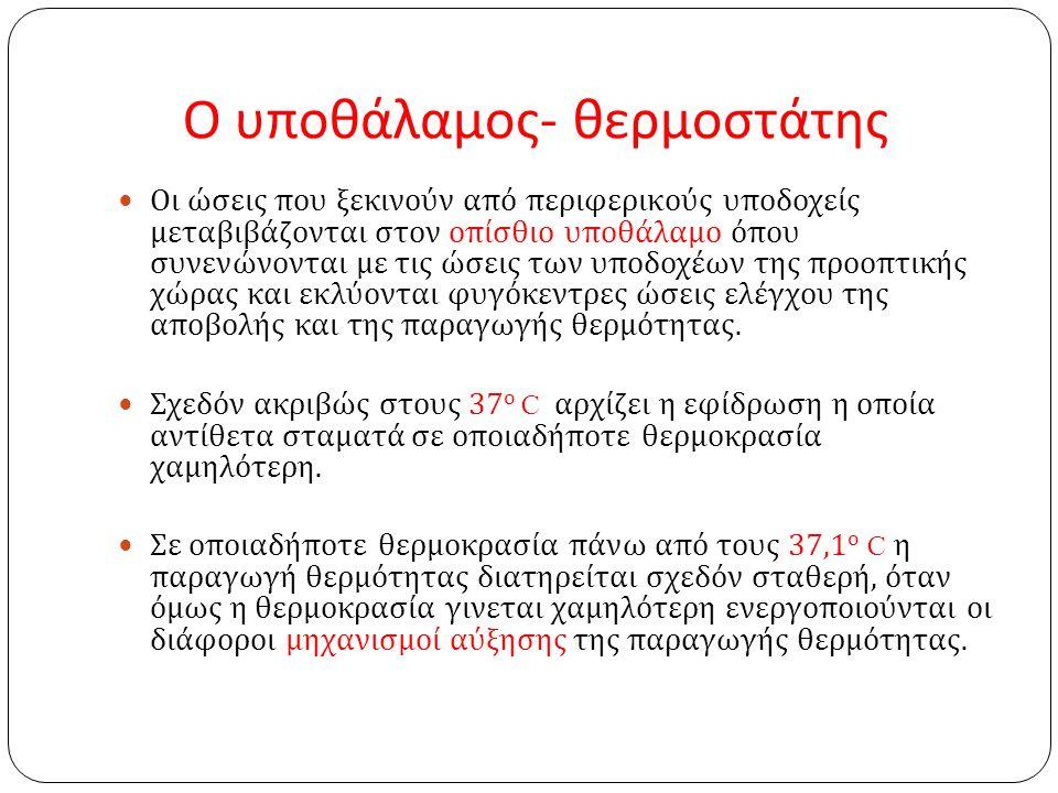 Ο υποθάλαμος - θερμοστάτης Οι ώσεις που ξεκινούν από περιφερικούς υποδοχείς μεταβιβάζονται στον οπίσθιο υποθάλαμο όπου συνενώνονται με τις ώσεις των υποδοχέων της προοπτικής χώρας και εκλύονται φυγόκεντρες ώσεις ελέγχου της αποβολής και της παραγωγής θερμότητας.