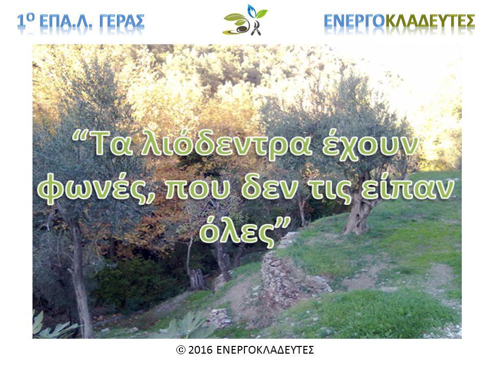  2016 ΕΝΕΡΓΟΚΛΑΔΕΥΤΕΣ