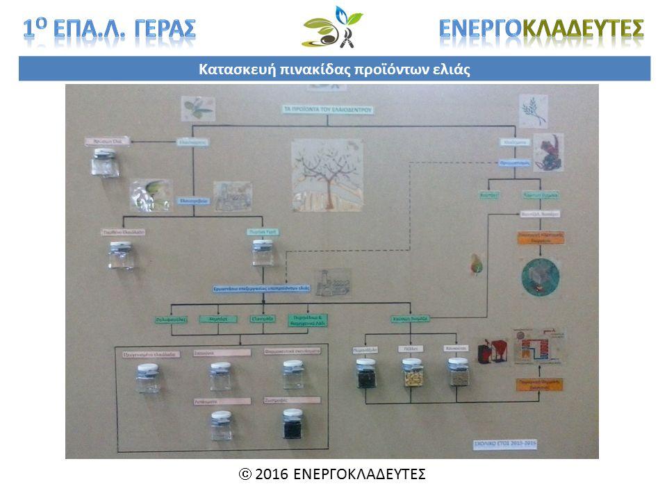 Κατασκευή πινακίδας προϊόντων ελιάς  2016 ΕΝΕΡΓΟΚΛΑΔΕΥΤΕΣ