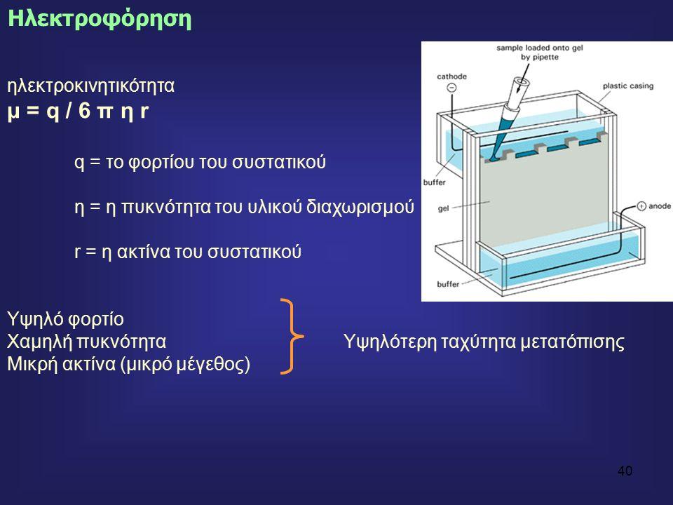 40 ηλεκτροκινητικότητα μ = q / 6 π η r q = το φορτίου του συστατικού η = η πυκνότητα του υλικού διαχωρισμού r = η ακτίνα του συστατικού Υψηλό φορτίο Χαμηλή πυκνότηταΥψηλότερη ταχύτητα μετατόπισης Μικρή ακτίνα (μικρό μέγεθος) Ηλεκτροφόρηση