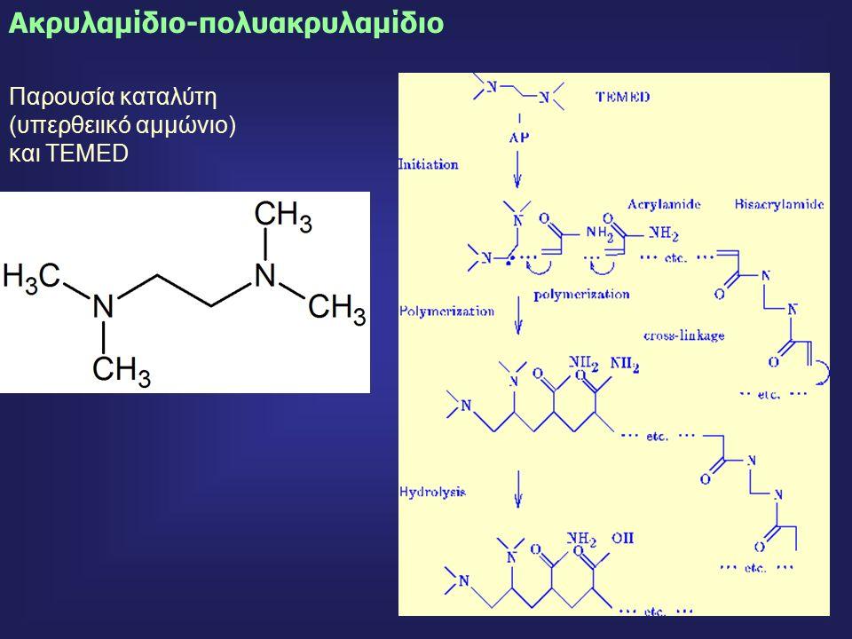 43 Ακρυλαμίδιο-πολυακρυλαμίδιο Παρουσία καταλύτη (υπερθειικό αμμώνιο) και TEMED