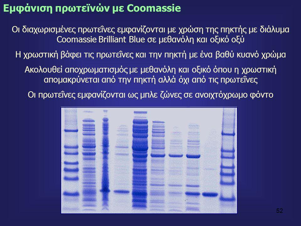 52 Eμφάνιση πρωτεϊνών με Coomassie Οι διαχωρισμένες πρωτεΐνες εμφανίζονται με χρώση της πηκτής με διάλυμα Coοmassie Brilliant Blue σε μεθανόλη και οξικό οξύ Η χρωστική βάφει τις πρωτεΐνες και την πηκτή με ένα βαθύ κυανό χρώμα Ακολουθεί αποχρωματισμός με μεθανόλη και οξικό όπου η χρωστική απομακρύνεται από την πηκτή αλλά όχι από τις πρωτεΐνες Οι πρωτεΐνες εμφανίζονται ως μπλε ζώνες σε ανοιχτόχρωμο φόντο