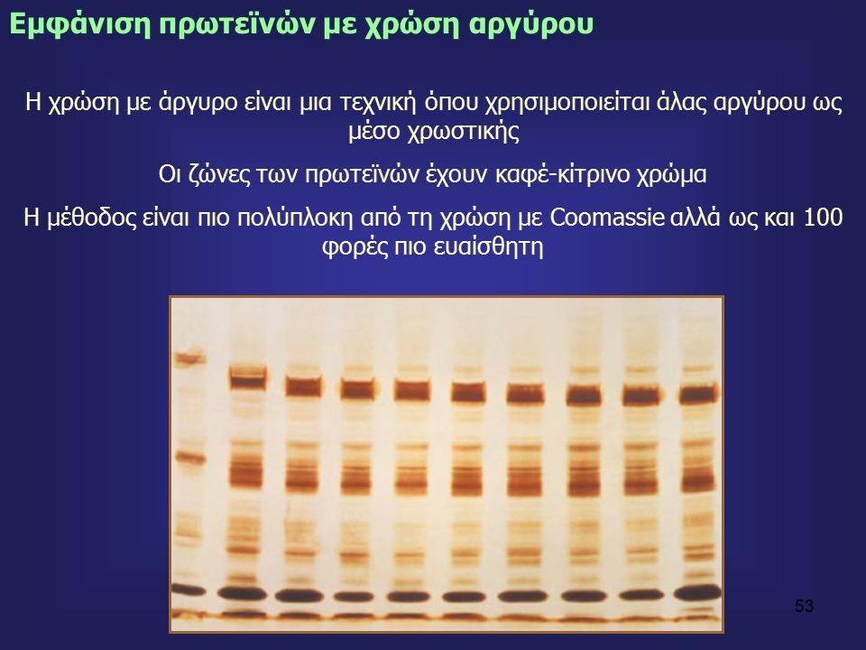 53 Η χρώση με άργυρο είναι μια τεχνική όπου χρησιμοποιείται άλας αργύρου ως μέσο χρωστικής Οι ζώνες των πρωτεϊνών έχουν καφέ-κίτρινο χρώμα Η μέθοδος είναι πιο πολύπλοκη από τη χρώση με Coοmassie αλλά ως και 100 φορές πιο ευαίσθητη Eμφάνιση πρωτεϊνών με χρώση αργύρου
