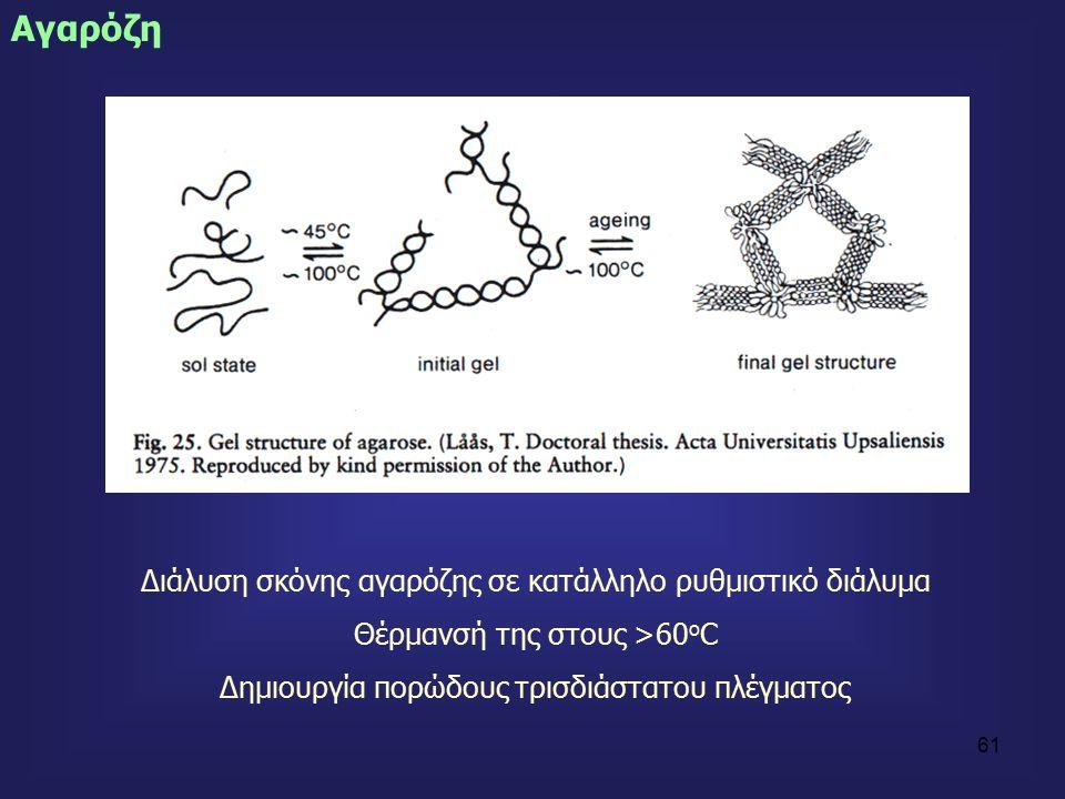 61 Αγαρόζη Διάλυση σκόνης αγαρόζης σε κατάλληλο ρυθμιστικό διάλυμα Θέρμανσή της στους >60 ο C Δημιουργία πορώδους τρισδιάστατου πλέγματος