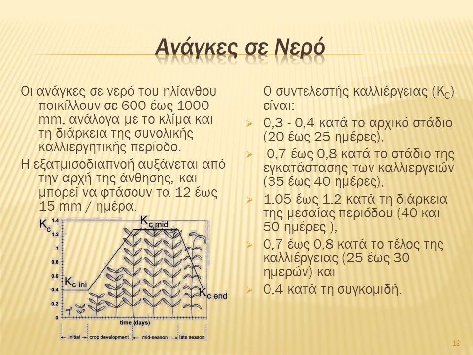 Οι ανάγκες σε νερό του ηλίανθου ποικίλλουν σε 600 έως 1000 mm, ανάλογα με το κλίμα και τη διάρκεια της συνολικής καλλιεργητικής περίοδο. Η εξατμισοδια
