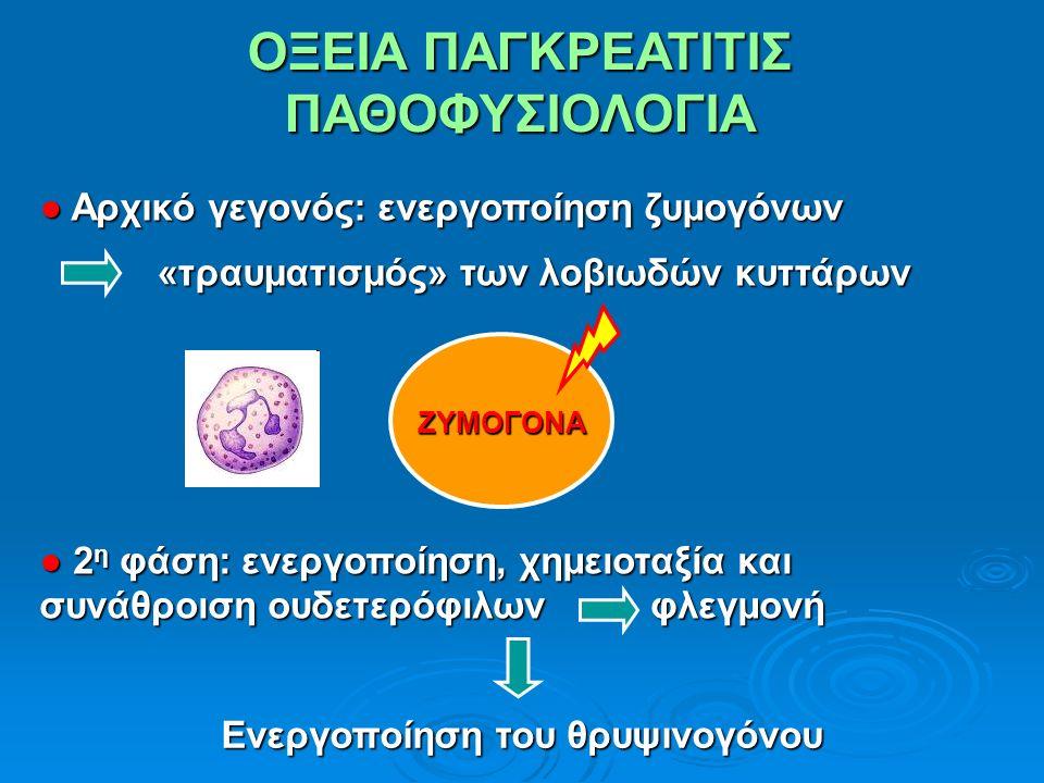 ΟΞΕΙΑ ΠΑΓΚΡΕΑΤΙΤΙΣ ΠΑΘΟΦΥΣΙΟΛΟΓΙΑ ● Αρχικό γεγονός: ενεργοποίηση ζυμογόνων «τραυματισμός» των λοβιωδών κυττάρων «τραυματισμός» των λοβιωδών κυττάρων ΖΥΜΟΓΟΝΑΖΥΜΟΓΟΝΑ ● 2 η φάση: ενεργοποίηση, χημειοταξία και συνάθροιση ουδετερόφιλων φλεγμονή Ενεργοποίηση του θρυψινογόνου