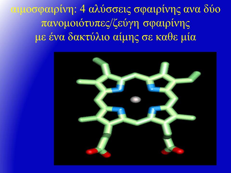 Α ιμοσφαιρίνες Μ ολόκληρη ομάδα από ασταθείς αιμοσφαιρίνες με τάση εύκολης οξείδωσης σε μεθαιμοσφαιρίνη η μεθαιμοσφαιρίνη, δεν μεταφέρει Ο2 (κυάνωση) στην μεθαιμοσφαιρίνη, ο Fe είναι τρισθενής μελετώνται φασματοσκοπικώς και με ηλεκτροφόρηση σε άμυλο pH 7.0