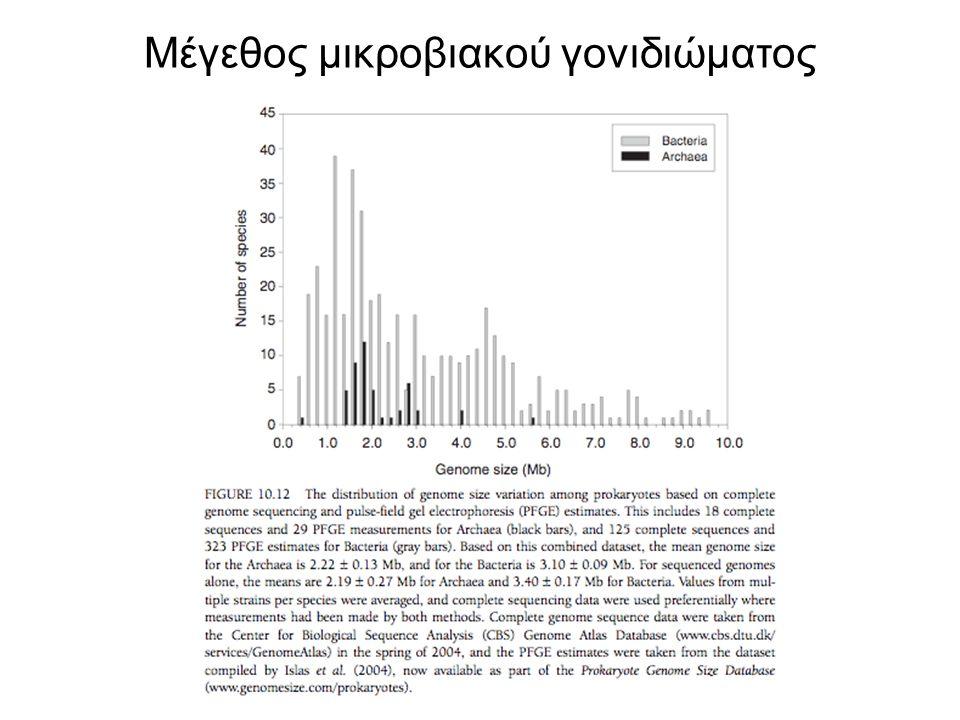 Μέγεθος μικροβιακού γονιδιώματος