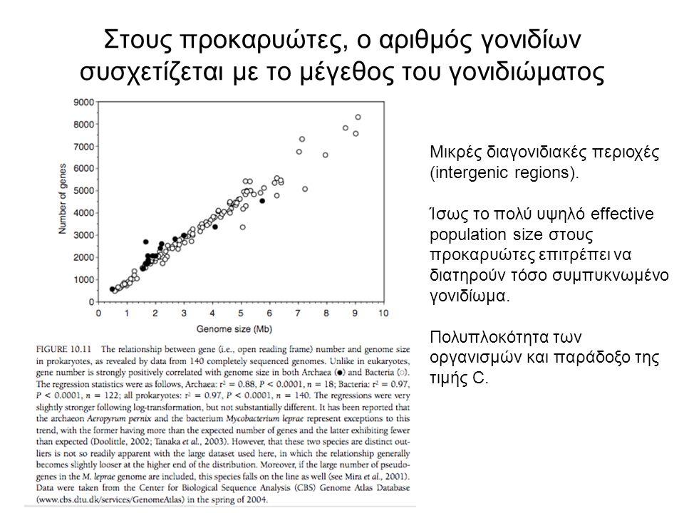 Στους προκαρυώτες, ο αριθμός γονιδίων συσχετίζεται με το μέγεθος του γονιδιώματος Μικρές διαγονιδιακές περιοχές (intergenic regions). Ίσως το πολύ υψη
