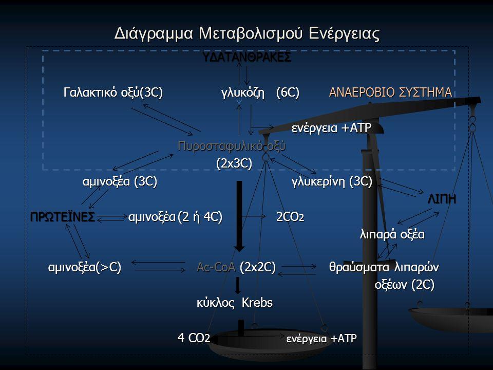 Διάγραμμα Μεταβολισμού Ενέργειας ΥΔΑΤΑΝΘΡΑΚΕΣ Γαλακτικό οξύ(3C) γλυκόζη(6C) ΑΝΑΕΡΟΒΙΟ ΣΥΣΤΗΜΑ Γαλακτικό οξύ(3C) γλυκόζη(6C) ΑΝΑΕΡΟΒΙΟ ΣΥΣΤΗΜΑ ενέργεια +ΑΤΡ ενέργεια +ΑΤΡ Πυροσταφυλικό οξύ (2x3C) (2x3C) αμινοξέα (3C) γλυκερίνη (3C) αμινοξέα (3C) γλυκερίνη (3C) ΛΙΠΗ ΛΙΠΗ ΠΡΩΤΕΪΝΕΣ αμινοξέα(2 ή 4C)2CO 2 λιπαρά οξέα λιπαρά οξέα αμινοξέα(>C) Ac-CoA (2x2C) θραύσματα λιπαρών οξέων (2C) κύκλος Krebs κύκλος Krebs 4 CO 2 ενέργεια +ΑΤΡ