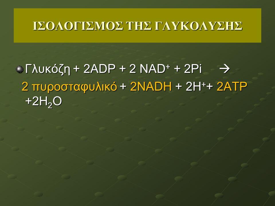 ΙΣΟΛΟΓΙΣΜΟΣ ΤΗΣ ΓΛΥΚΟΛΥΣΗΣ Γλυκόζη + 2ΑDΡ + 2 ΝΑD + + 2Pi  2 πυροσταφυλικό + 2NADH + 2H + + 2ΑΤΡ +2Η 2 Ο 2 πυροσταφυλικό + 2NADH + 2H + + 2ΑΤΡ +2Η 2 Ο